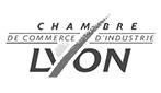 Chambre de Commerce et de l'Industrie de Lyon